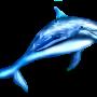 Le dauphin bleu